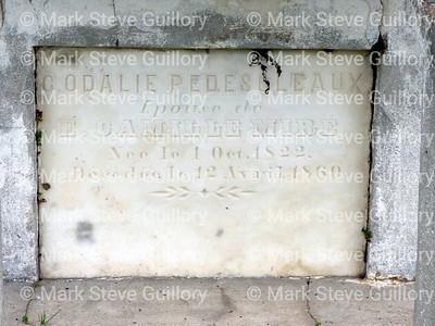 St James Catholic Church Cemetery, St James, La 012817 020 Pedesoleaux Mire