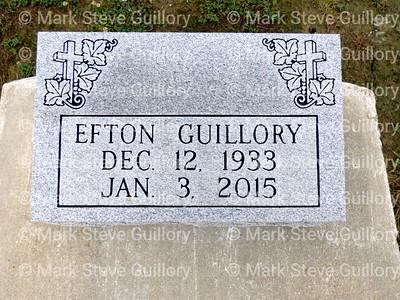Platin Cemetery, Ville Platte, Louisiana 06272020-020 Guillory