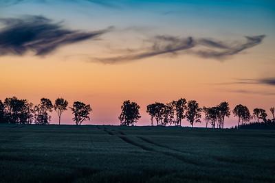 Õhtune loojangutaevas / colorful evening sky
