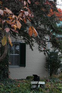 Oct. 27, 2009: Stonewall Jackson's headquarters.