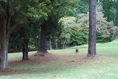 Oct. 1, 2009: Confederate Battery 8, C
