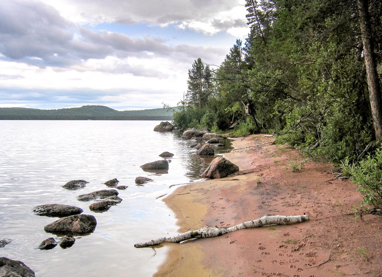 IMAGE: https://photos.smugmug.com/Later-visits-to-Finland/Muddus-Lake-Lapland/i-QmKW8Lt/0/0047a379/X2/42.%20Muddus%20Lake%2C%20sandy%20beach%20looking%20right%20-%202%20-%201356-1-X2.jpg