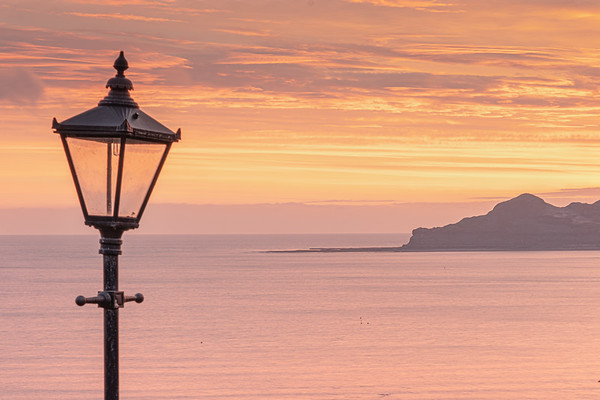 Lamp Light Runswick Bay