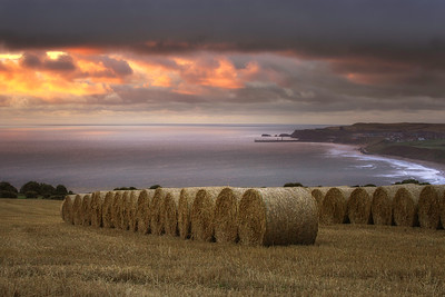 STRAW BALES - LYTHE BANK, WHITBY