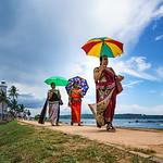 Sri Lanka 43