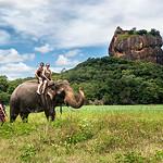 Sri Lanka 20