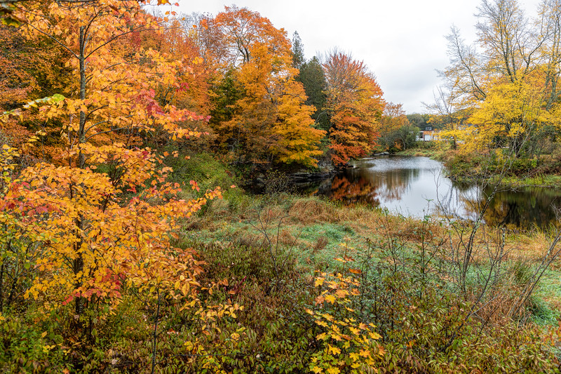 Maine Pond