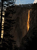 Horsetail Firefall 01