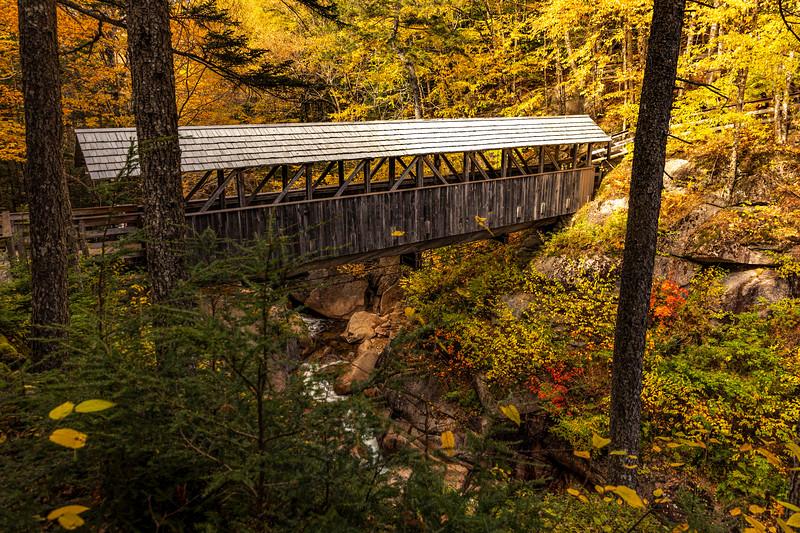NH Sentinel Pine Covered Bridge 2