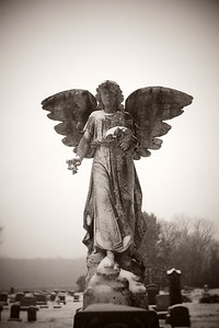 Snow Angel---Elverson, PA