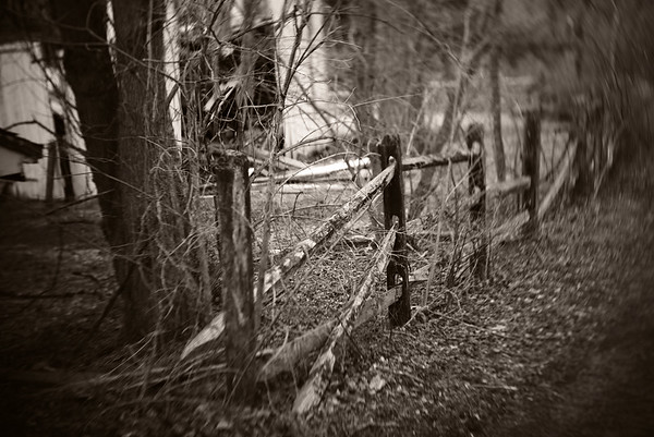 Fence---Norristown, PA