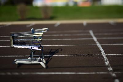Shopping Cart---Eagleville, PA