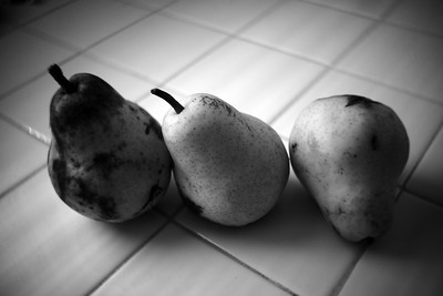 Trio of Pears, Norristown, PA
