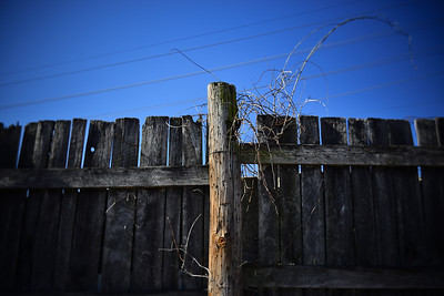 Weathered Fence---Reading, PA