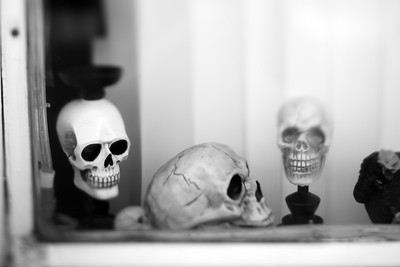 Skulls---Wilkes-Barre, PA