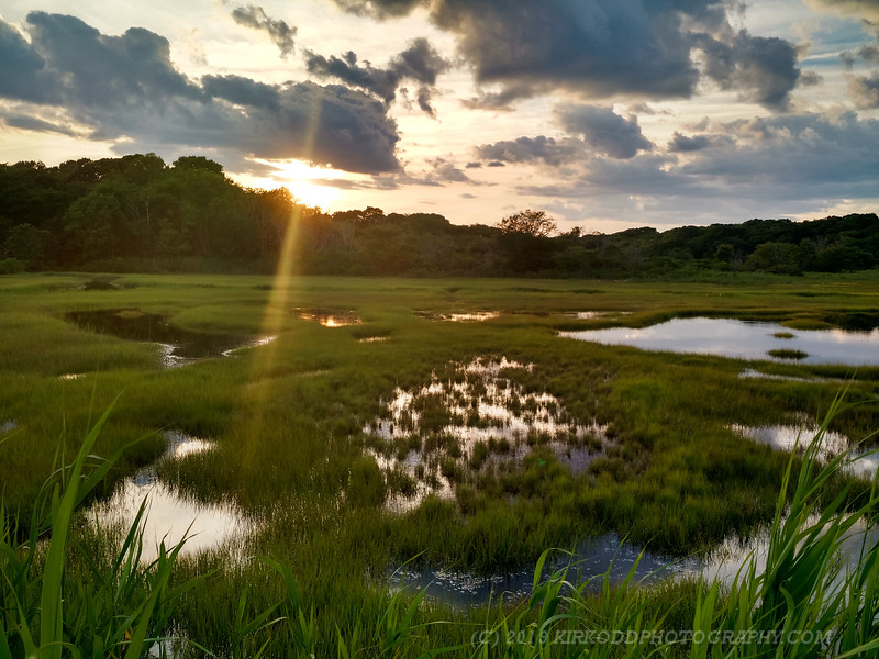 Barn Island Wetlands