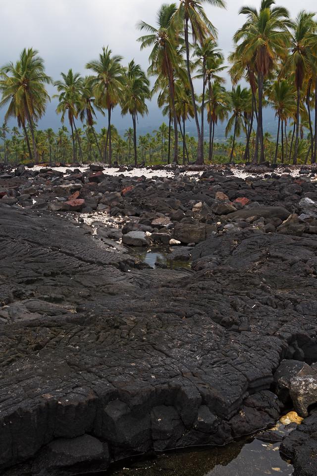 """Coming Ashore""<br /> (Pu'uhonua o Honaunau)"
