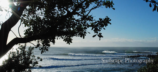 Early Morning Swell, Angourie Point, NSW