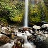 Dawson Falls in Egmont National Park