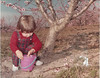 peach blooms on R A  Stallings farm - Elizabeth Knight2