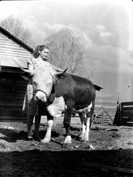 JC_LFN_000435_Kathleen Skinner_Steer_4-1947