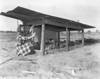 JC_LFN_000369_4H Chick Range_Roma Gene Parrish_4-1-1948