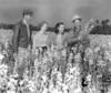 JC_LF_000474_Field of possible Lupine with 2 men and 2 women