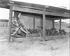 JC_LFN_000368_4H Chick Range_Roma Gene Parrish_4-1-1948