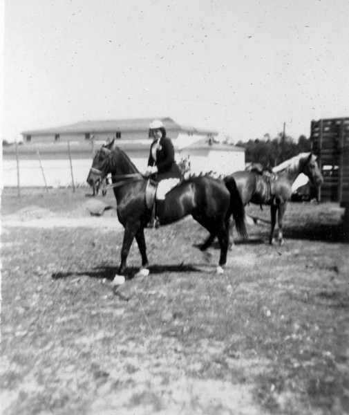 Horse Show on Nashville High School (late Nashville Elementary). (Photographs courtesy of Arch Clark)