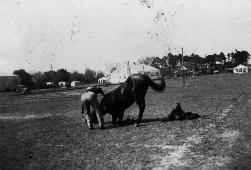 Horse Show on Nashville High School (later Nashville Elementary). (Photographs courtesy of Arch Clark)