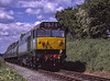"""D444 (50044 """"Exeter"""") approaching Bluebell Crossing, with the 10:55 Alresford - Alton, <br /> on 22nd May 2004. Scanned Transparency."""