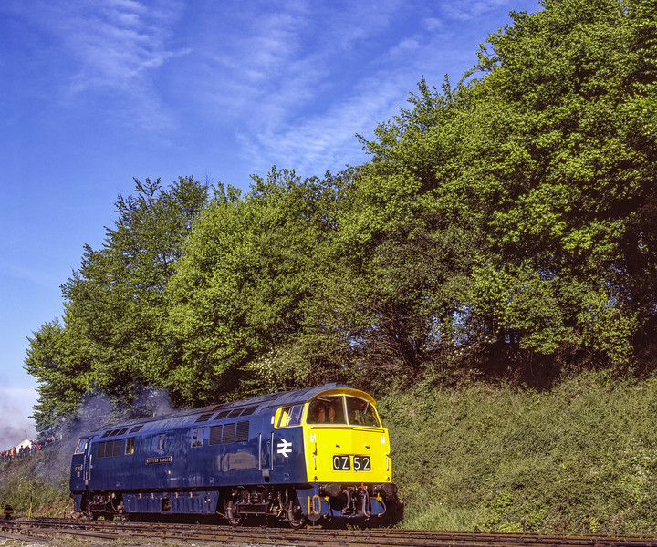 """D1013 """"Western Ranger"""" departs Ropley, working light engine to Alton,  on 15th May 2005. Scanned Transparency."""