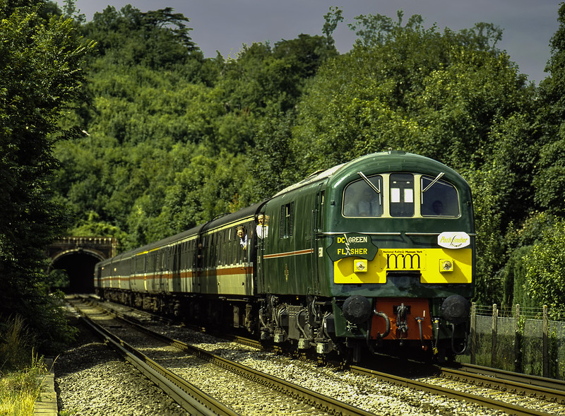 """Class 71: E5001 exits Mickleham Tunnel with 1Z39, the 14:58  Waterloo - Southampton <br /> leg of the """"DC Green Flasher"""" railtour organised by Pathfinder Tours, on 17th July 1993. <br /> Scanned Transparency."""