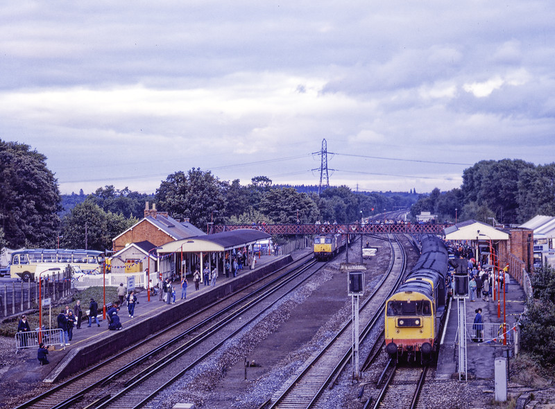 "20132 and 20020 at Winchfield with 1Z36, the 18:00 Woking - Waterloo, via Romsey, <br /> ""Test Valley Rambler II""on 25th September 1988. This was a special service organised by Network SouthEast in connection with Winchfield 150. The two 20s worked <br /> Woking - Andover, Std Tank No. 80080 worked Andover - Romsey, the two 20s worked Romsey - Basingstoke, where 73001 and 73004 took over for the run up to Waterloo. Scanned Negative."