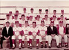 "Berrien High School basesball team, 1966.<br /> L-R: Wayman Vickers, coach, Raymond Tucker, Johnny Gaskins, Larry Watson, Rusty Darby, Milton ""Killer"" Sizemore, Harris Tucker; 2nd row: ?, Robert Connell, Buck Swindle, Jimmy Harris, Jimbo Tygart, Franklin Harrell, ?, ?; 3rd row: ?,Charles Dieas,?, Bob Clyatt, ?, Wayne Jones, Danny Solomon, Elmo Spells"