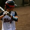 Marti Littlefield batting for the VSU Lady Blazer Softball Team<br /> <br /> (photo courtesy of VSU Sports Information)