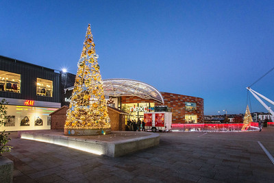 Christmas Tree of Life at the Friars Walk Shopping Centre 20