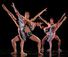 Artists of Houston Ballet in TUTU