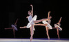 Artists of Houston Ballet in Velocity  by Stanton Welch