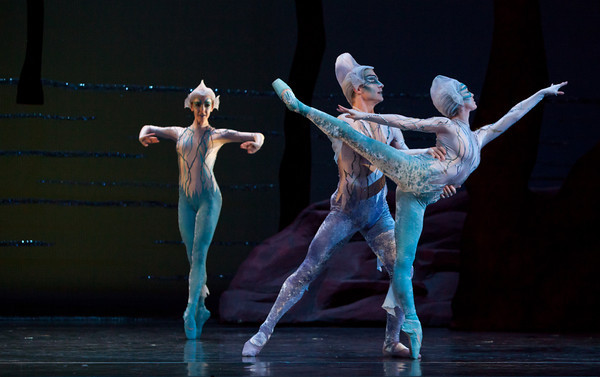 Artists of Houston Ballet