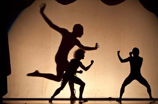 Artists of Houston Ballet