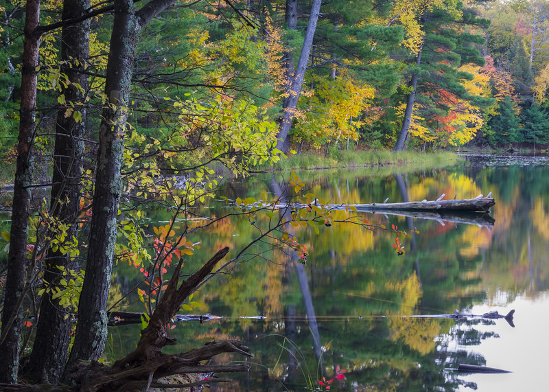 WI 183<br /> <br /> Autumn colors along the shoreline of a secluded northwoods lake in northern Wisconsin.
