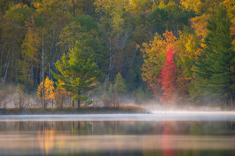 WI 175<br /> <br /> Sunrise reflections of autumn colors in a Little Bearskin lake.