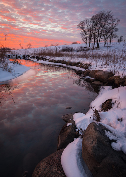 SBP 229<br /> <br /> Vivid colors of a winter sunset reflected in the surface of Spring Brook.  Springbrook Prairie Nature Preserve, DuPage County, Illinois.