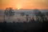 MI 224     The sun illuminates the mist rising over a wetland conservation area in southeastern Michigan.