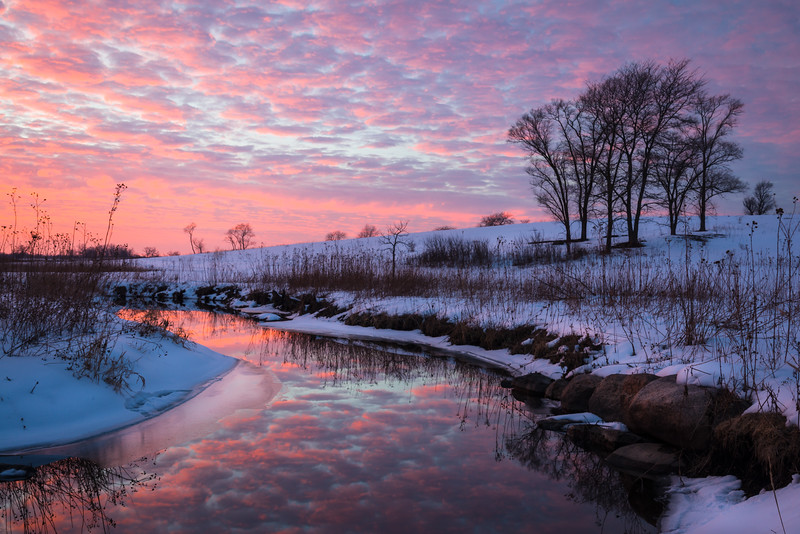 SBP 228<br /> <br /> Vivid colors of a winter sunset reflected in the surface of Spring Brook.  Springbrook Prairie Nature Preserve, DuPage County, Illinois.