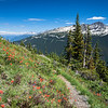 CA 004<br /> <br /> High Note Trail on British Columbia's Whistler Mountain offers hikers a breathtaking view of neighboring Blackcomb Mountain.