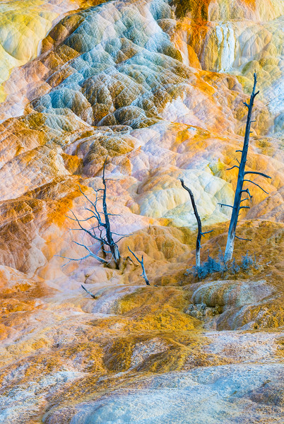 Colors of Yellowstone
