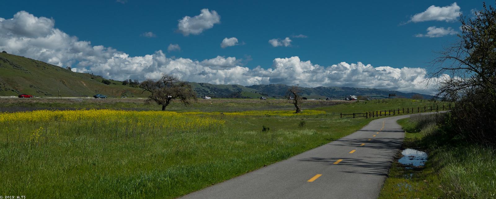 Coyote Creek Bike Trail