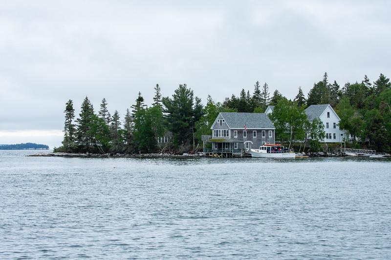 Hog Island Audubon Camp